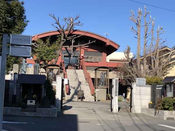 寿徳寺大銀杏(本堂右側)