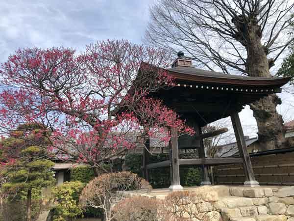 大昌寺の鐘楼(時の鐘)