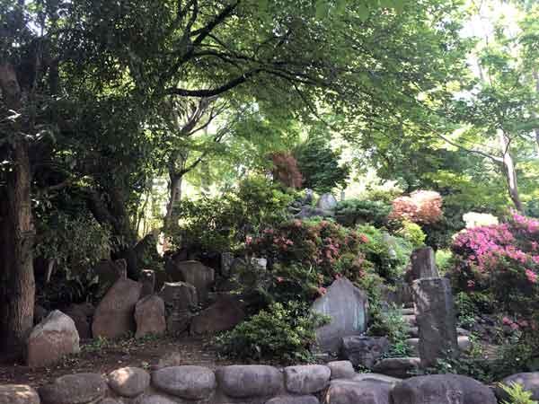 護国寺の富士塚